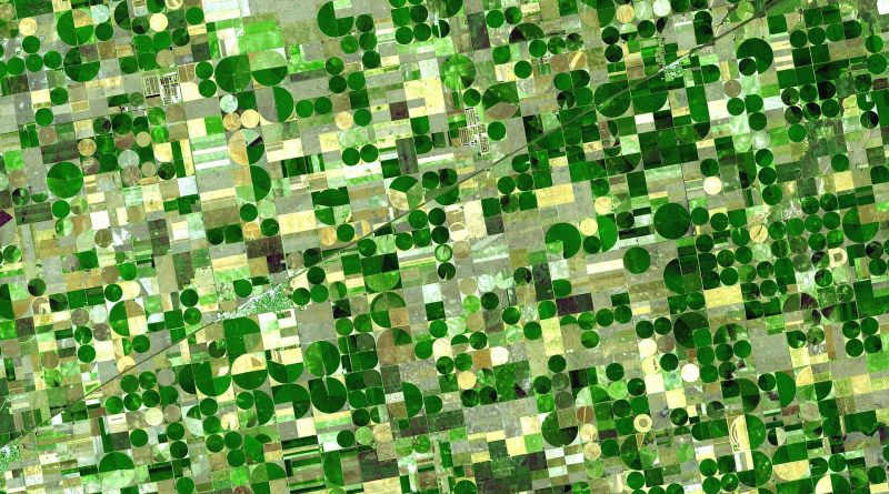 Webinar ESRI – Transformación digital del sector agrario